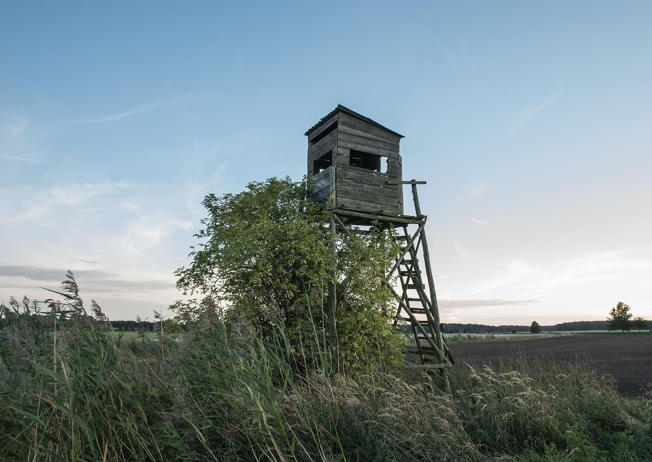 נפילה ממגדל שמירה בגלל הצבא