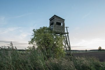 נפילה ממגדל שמירה בצבא